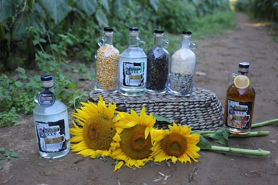 Dalton, GA: Raymond's Reserve pictured with our main ingredient Sunflowers