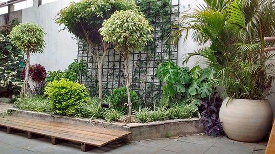 Estado de São Paulo: jardim de descanso