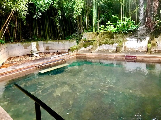 Matamata, New Zealand: Ramaroa Hot Springs (private)