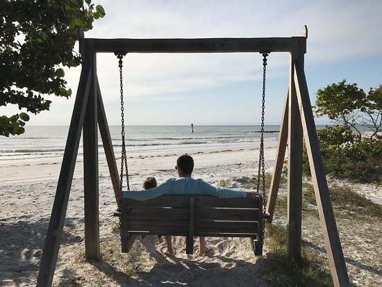 Honeymoon Island State Park: Gorgeous views