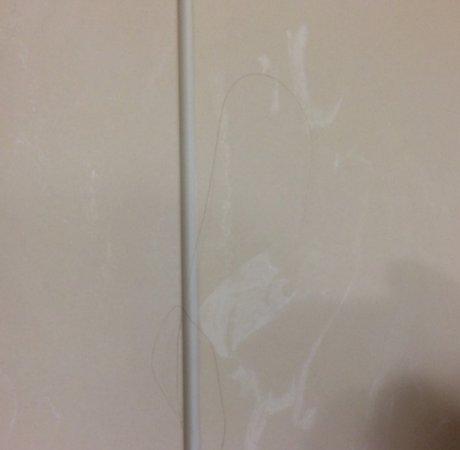 Fort Wayne, IN: Hair in shower