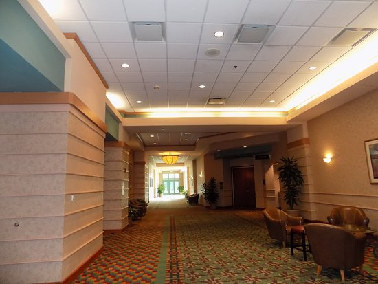 Cary, Carolina del Norte: The lobby