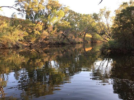 West Swan, Australië: Settlers Rest Farmstay
