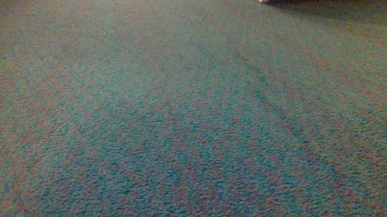 Junction City, OR: Enough bulking in the carpet throughout the room to cause a person to trip and fall.