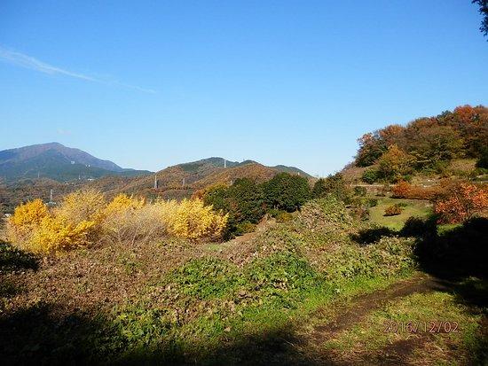 Hadano, Japón: そこから、丹沢山系を望むのもきれい