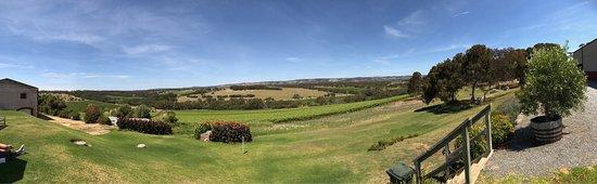 McLaren Vale, Australien: photo0.jpg