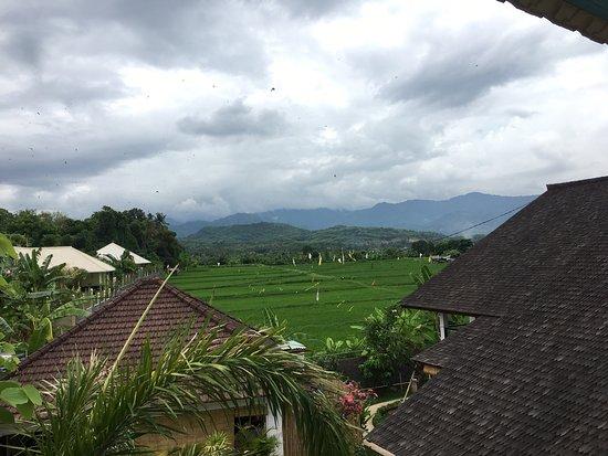 Seririt, Indonesia: photo3.jpg