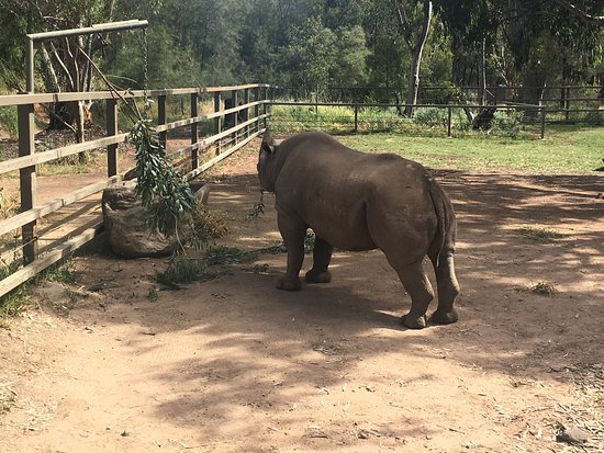 Dubbo, Australia: Taronga Western Plains Zoo
