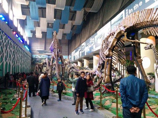 Zhucheng, الصين: IMG_20161203_114124_large.jpg