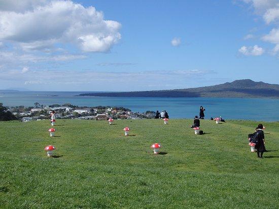Devonport, Nouvelle-Zélande : 丘のキノコ