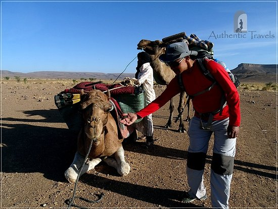 Imlil, Morocco: Crossing Jbel Bani Mountains with our camels