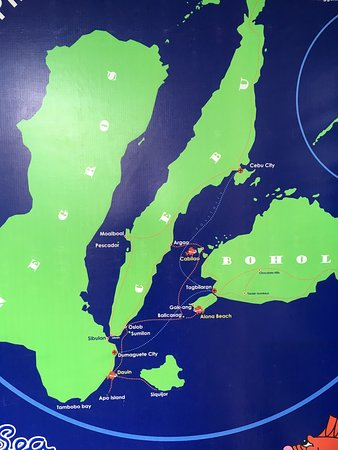 photo4 Picture of Sea Explorers Philippines Dauin TripAdvisor