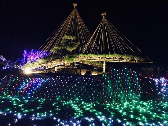 Yamanakako-mura, Japan: photo1.jpg