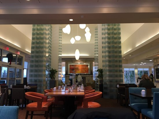Hilton Garden Inn Detroit Novi Mi Omd Men Och Prisj Mf Relse Tripadvisor