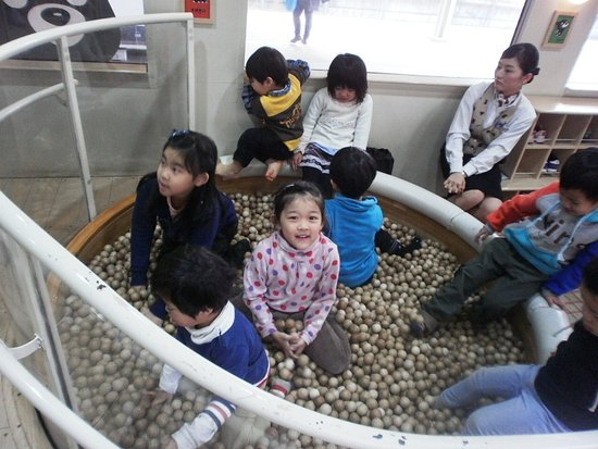 Kumamoto Prefecture, اليابان: 車内の子ども向け遊び場で、ミニ図書室もあります。