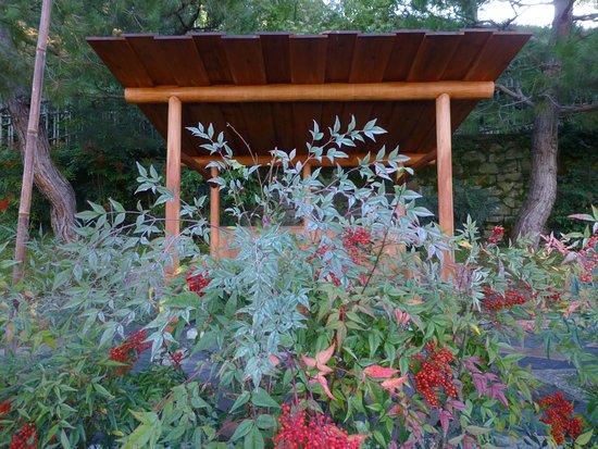 folon e il giardino delle rose jardin japones