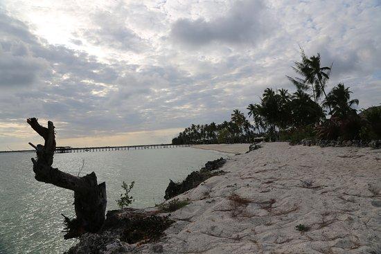 The Residence Zanzibar: вид
