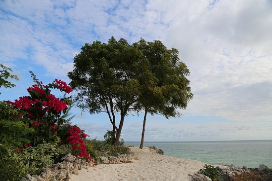 The Residence Zanzibar: ви