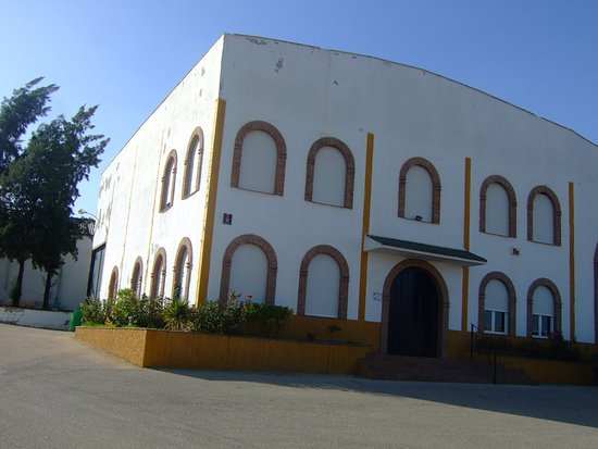 S.C.A. de la vid Santa Gertrudis