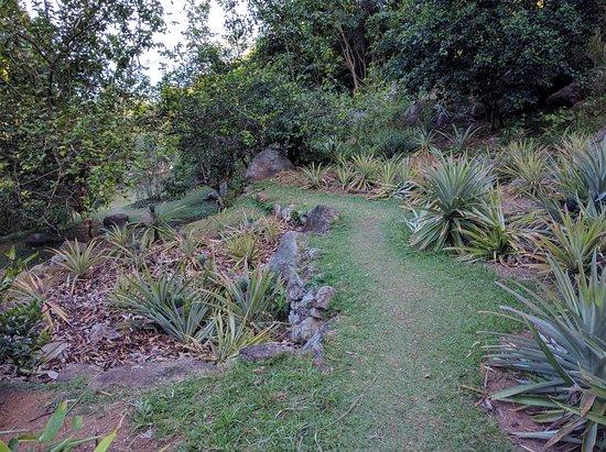 Νήσος Μάχε, Σεϋχέλλες: Le Jardin Du Roi Spice Garden