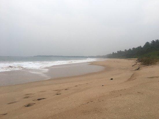 Rekawa, Sri Lanka: photo7.jpg
