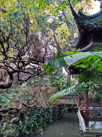 Nature of a garden - Picture of Yu Garden (Yuyuan), Shanghai ...