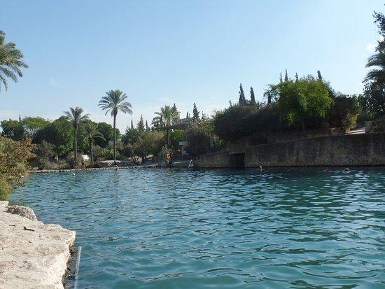 Beit She'an, Israel: Coin de paradis