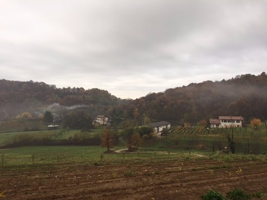 Cormons, Ιταλία: The rolling hills above the cottages .. ..