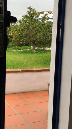 Reguengos de Monsaraz, Portugal: photo0.jpg