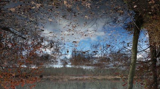 Westampton, Nueva Jersey: Water