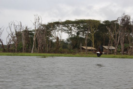 Foto de Provincia del valle del Rift