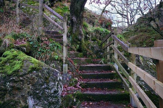 From The Ingleton Waterfalls Trail