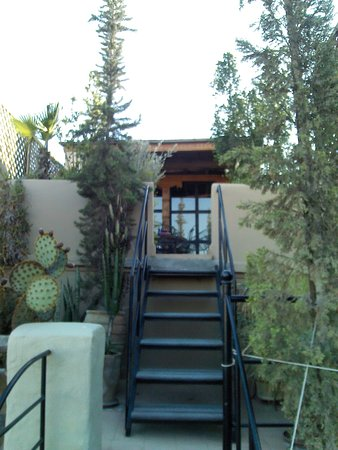 Riad Maia: Une des terrasses arborées