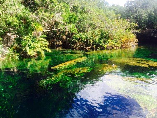 Yucatan, Mexico: photo2.jpg