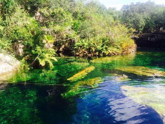 Yucatan, Mexique : photo7.jpg