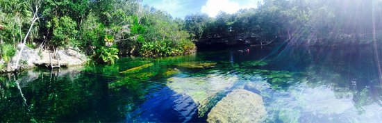 Yucatan, Mexique : photo8.jpg