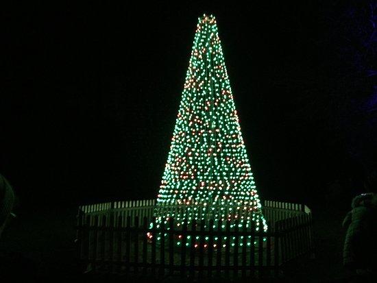 blenheim palace christmas light show