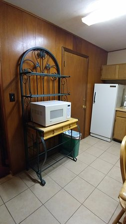 Arrowhead Lodge : Microwave and fridge