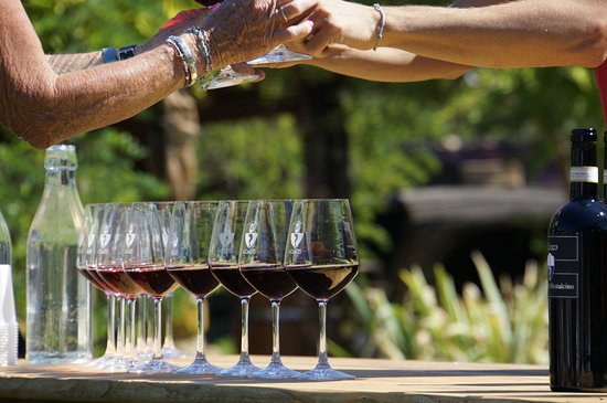 Walk About Tuscany Tours: Wine tasting at II Cocco Winery