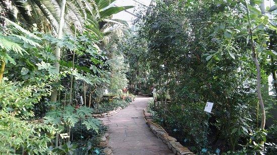 Palmiarnia Łodzka