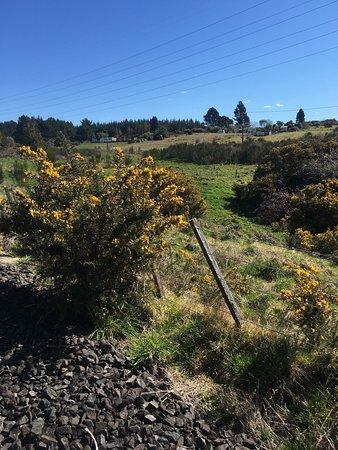 Mamaku, Selandia Baru: Railcruising