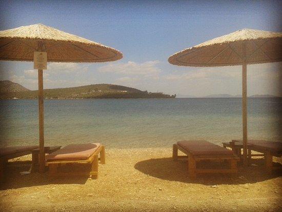 Korfos Photo