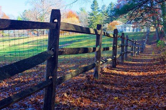 Canton, MA: Woodside trail