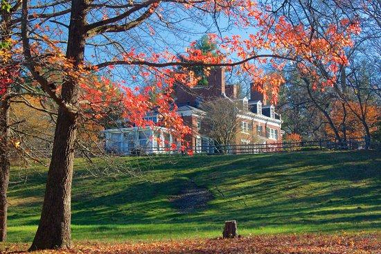Canton, MA: Fall colors