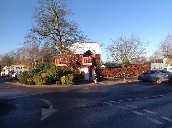 Wrea Green, UK: Tree house