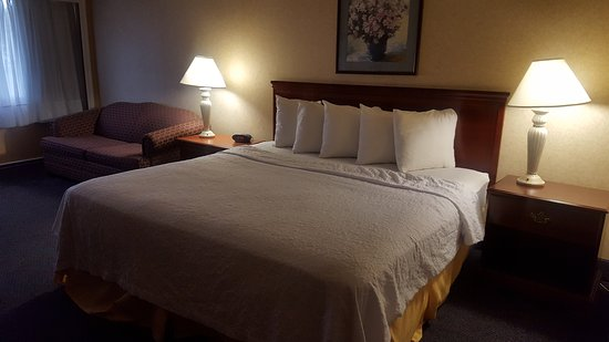 BEST WESTERN Lehigh Valley Hotel & Conference Center: King Bed Room