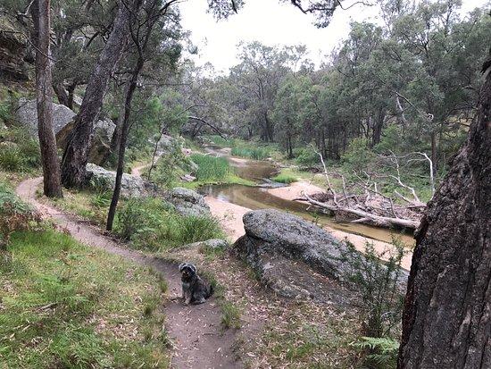 Mudgee, Australië: photo2.jpg