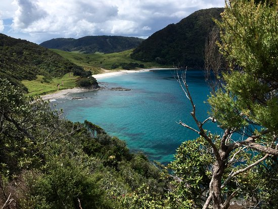 Whangarei, Nueva Zelanda: Just one of the lovely coves you'll run across on this hike.