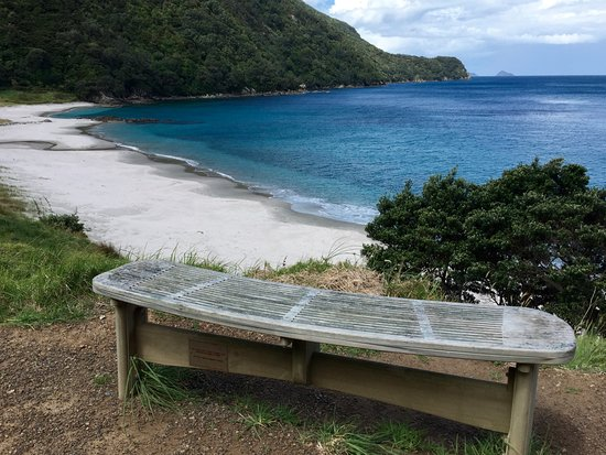Whangarei, Nueva Zelanda: Who wouldn't want to stop here for a picnic?
