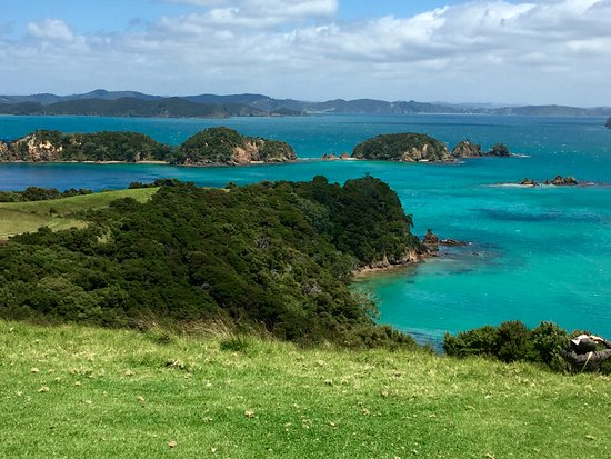 Paihia, New Zealand: Look at that water - it is lovely everywhere you look!